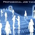 Professional Job Vacancies
