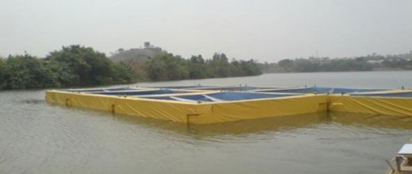 Aquaculture Ventures
