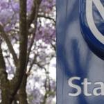 SA challenges Moody views
