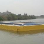 Dti, DAFF finalise aquaculture programme